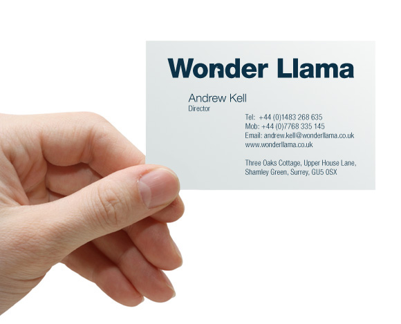 Welcome to WonderLlama
